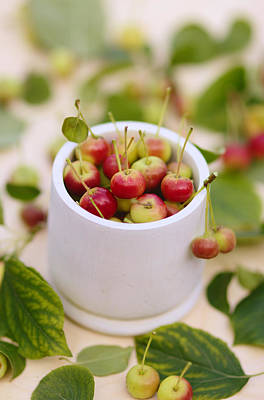 Photograph - Food Photo. Small Red Apples With Leaves. by Yana Shonbina