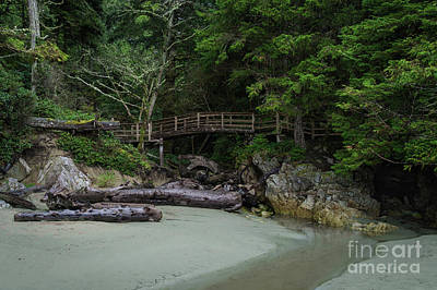 Photograph - Foot Bridge At Tonquin Beach by Carrie Cole
