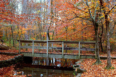 Photograph - Foot Bridge by Charles Bacon Jr