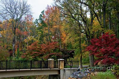Photograph - Foot Bridge In The Fall by Jill Lang