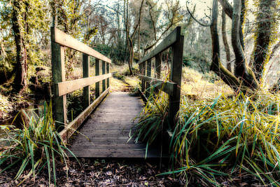 Photograph - Foot Bridge In Winter by Nick Bywater