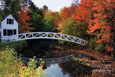 Somesville Photograph - Foot Bridge Over A Pond by George Oze