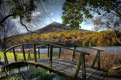 Maple Tree Photograph - Foot Bridge by Todd Hostetter