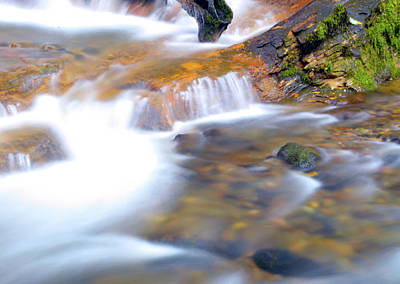 Photograph - Foot Of Coal Creek Falls by Brian O'Kelly