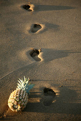 Foot Prints In The Sands Of Time Print by Michael Ledray
