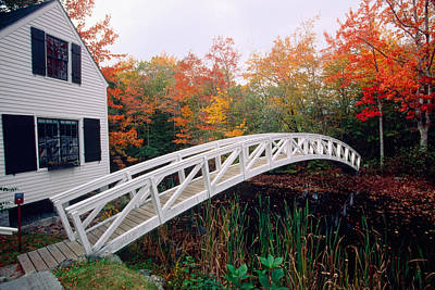 Somesville Photograph - Footbridge And Foliage by George Oze