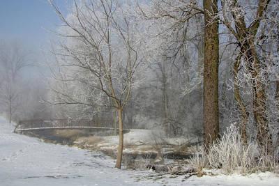 Photograph - Footbridge In Frosty Woods by Eleanor Caputo