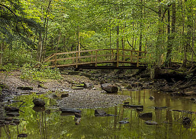 Photograph - Footbridge In The Woods by Ron Grafe
