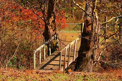 Photograph - Footbridge by Kathryn Meyer