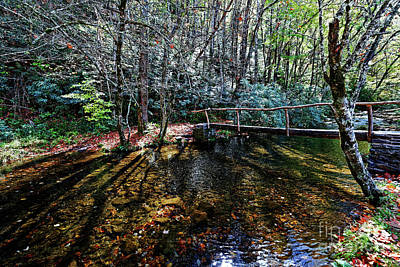 Photograph - Footbridge Over Rough Creek by Paul Mashburn