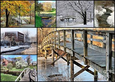 Photograph - Footbridges  by Janice Drew