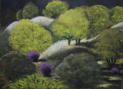 Foothill Spring Art Print