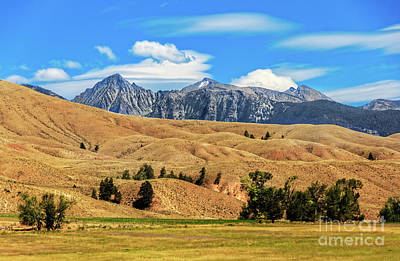 Photograph -  Foothills And The Rocky Mountains by Robert Bales