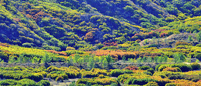 Photograph - Foothills Of Fall Color In Glenwood Springs by Ray Mathis