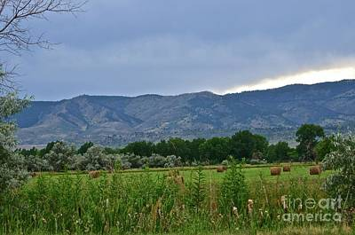 Foothills Of Fort Collins Art Print