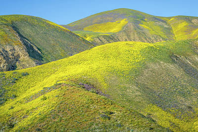 Luis Photograph - Foothills, Temblor Range by Joseph Smith