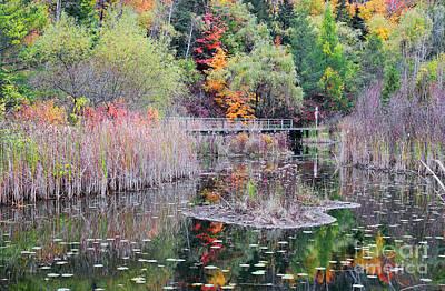 Photograph - Footpath Bridge Through Fall Colors by Charline Xia