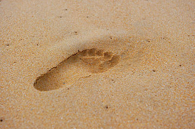 Photograph - Footprint In The Sand II by Helen Northcott