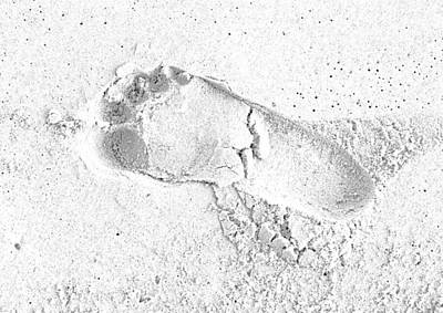 Footprint In The Sand Art Print by Patrick Kain