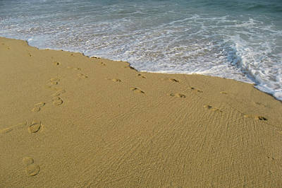 Photograph - Footprints In Acapulco by Tatiana Travelways