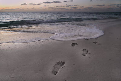 Footprints In The Sand Print by Betsy Knapp