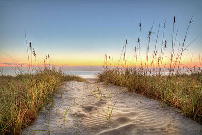 Photograph - Footprints In The Sand by Debra and Dave Vanderlaan