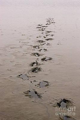 Photograph - Footprints In The Sand by Liz Alderdice