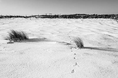 Footprints In The Snow I Art Print