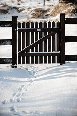 Photograph - Footprints Through The Gate by Helen Northcott
