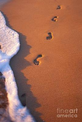 Photograph - Footprints by Tomas del Amo - Printscapes