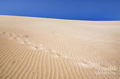 Photograph - Footprints by Werner Padarin