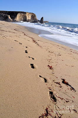 Photograph - Footsteps  by Anjanette Douglas