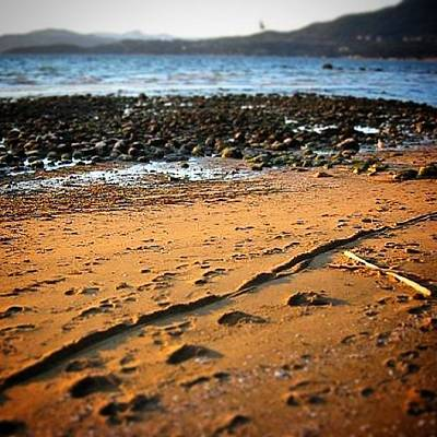 Photograph - Footsteps by Lauren Williamson