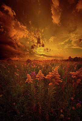 Photograph - For Body Mind And Soul by Phil Koch