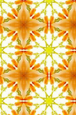 Digital Art -  For Carrot Lover's Abstract  by Sheila Mcdonald