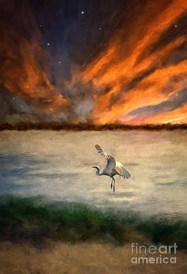 Egret Digital Art - For Just This One Moment by Lois Bryan