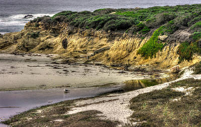 Photograph - For Now I Prefer This Quiet Tidepool - 17-mile Drive, Monterey Peninsula - Central California Coast by Michael Mazaika
