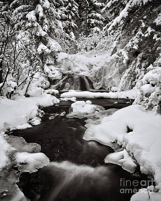 Hot Creek Photograph - For Now, Winter by Royce Howland