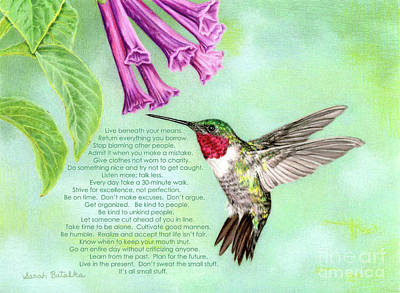 Hummingbird Drawing - For Rosemary by Sarah Batalka