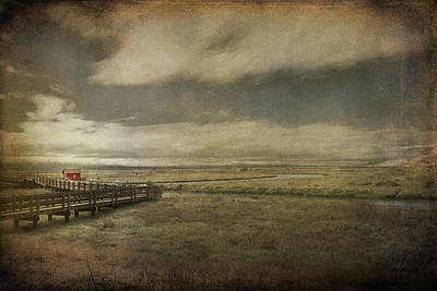 Wetlands Photograph - For The Lonely Souls by Laurie Search