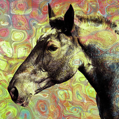 For The Love Of A Horse Art Print