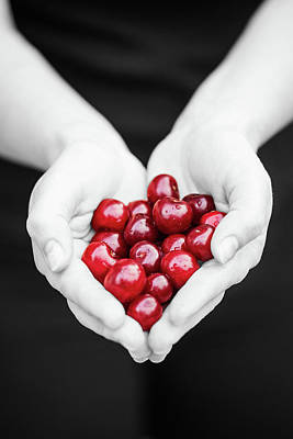Photograph - For The Love Of Cherries by Susan Maxwell Schmidt