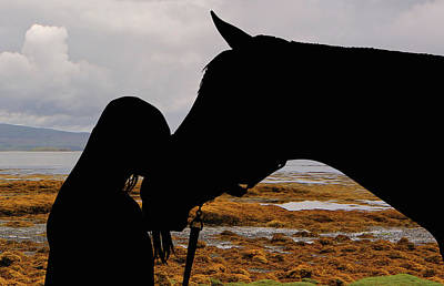 Photograph - For The Love Of Horses 010 by Ericamaxine Price