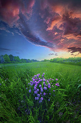 Photograph - For You For Always by Phil Koch