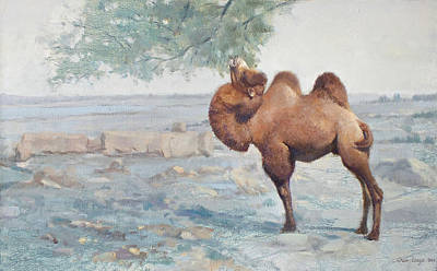 Camel Painting - Foraging by Chen Baoyi
