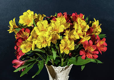 Foral Bouquet Of Red And Yellow Astomelia Art Print