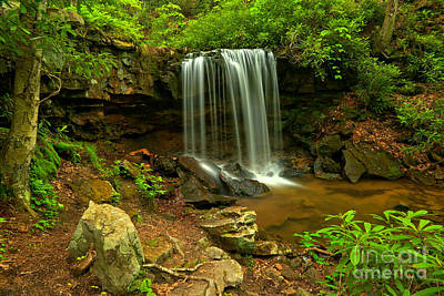 Photograph - Forbes Forest Lush Falls by Adam Jewell