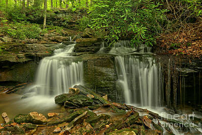 Photograph - Forbes State Forest Twin Falls by Adam Jewell