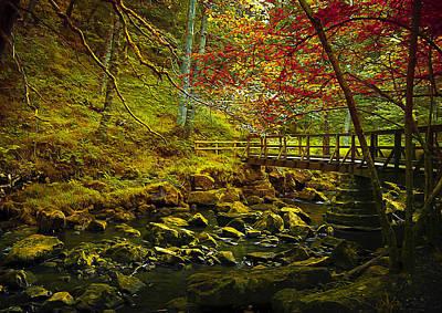 Red Leaf Digital Art - Forbidden Bridge  by Svetlana Sewell