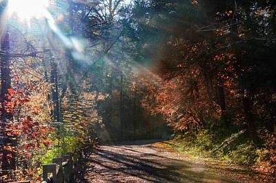 Forbidden Drive In Autumn - Philadelphia Art Print